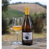 Sequerciani Vermentino IGT Toscana 2018 - N. 12 Bottiglie