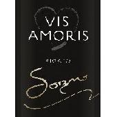 Pigato RLP Sogno - Vin Amoris