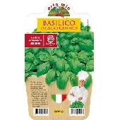 Basilico italiano (genovese) Piantina in Vaso 10 cm.  - Orto mio