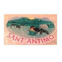 Logo Casearia Sant Antimo