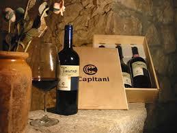 I Capitani : Un buon vino si può fare in cantina ma un vino eccezionale si può fare solo con il duro lavoro in vigna