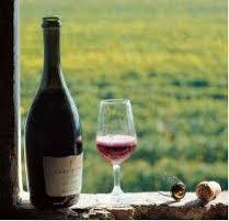 Medici Ermete Re dei vini italiani nel mondo; il Lambrusco