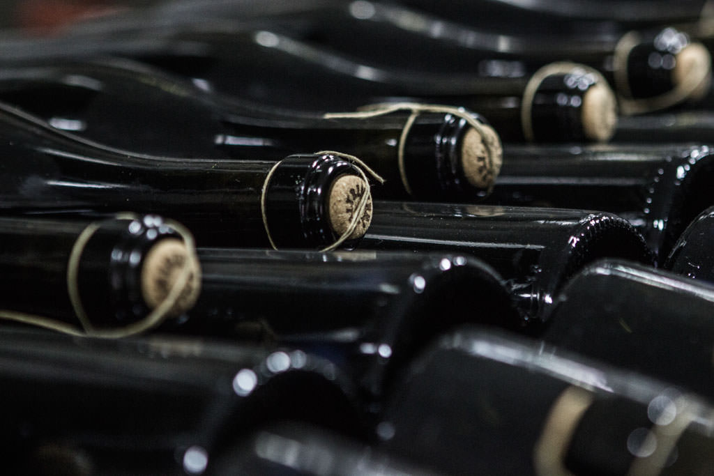 Cantina Paltrinieri is a family-run agricultural company which have been dedicating to the production of Lambrusco di Corbara doc for three generations