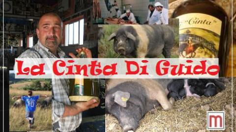 """""""Cinta senese"""" ist das Urexemplar aller Schweine in Toskana"""