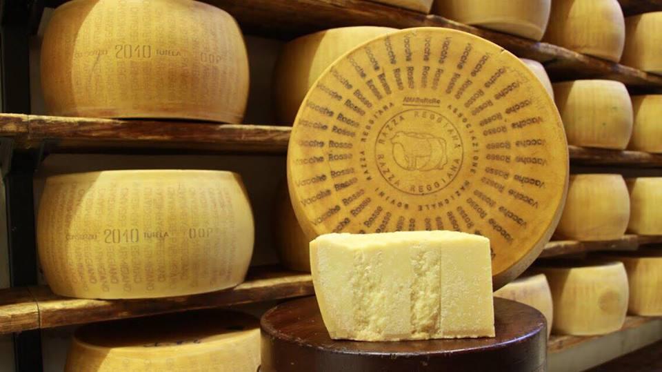 Parmiggiano Reggiano Vacche Rosse :I bovini di razza reggiana mangiano solo fieno e mangini cerificati no OGM.