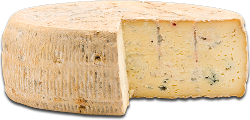 The famous Italian chef Vissani says Strachitunt is the best cheese of the world