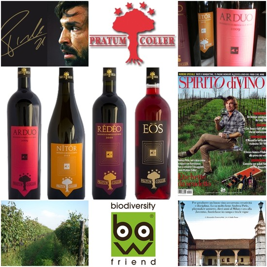 Andrea Pirlo It is called Pratum Coller and it is its wine-making company