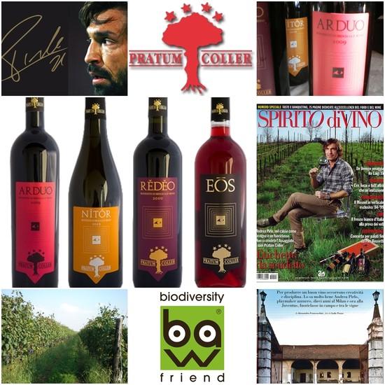 Andrea Pirlo Si chiama Pratum Coller ed è la sua azienda vinicola