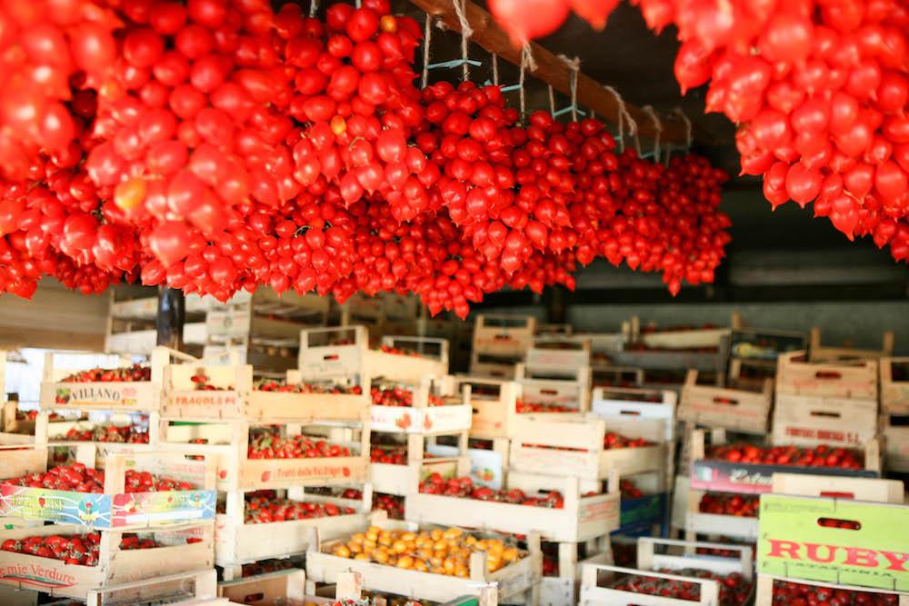 El tomate del Piennolo del Vesuvio DOP es uno de lso productos mas antiguos y típicos de la agricultura campana