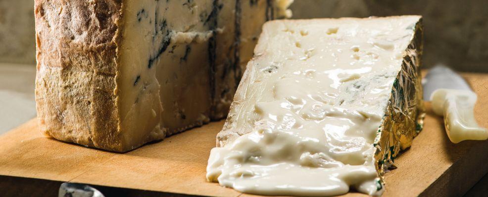 Gorgonzola, il più famoso formaggio erborinato italiano
