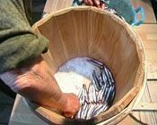 Colado de anchoas saladas