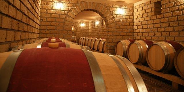 Tenuta Quintodecimo Arte y Ciencia del Vino