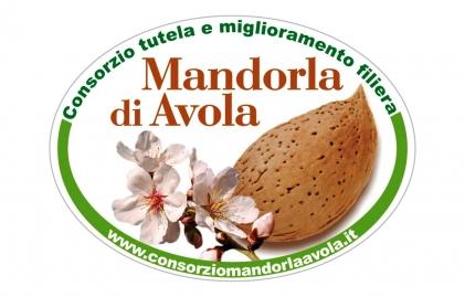 Almond d'Avola Consortium et amélioration Chain