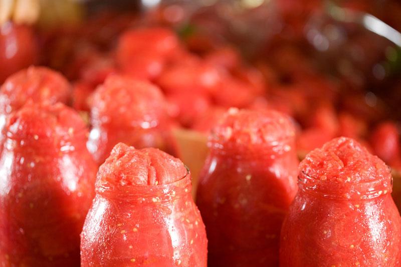 PAOLO PETRILLI, Tomatenkonserven