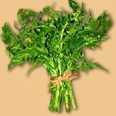 Frijarielli - Broccoli alla napoletana