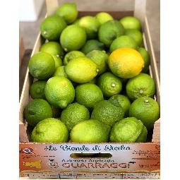 Limoni Siciliani Di Ribera - Az. Agricola Guarragi
