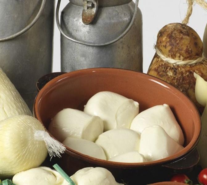 Mozzarella Fior di Latte Pugliese  di Andria Caseificio Olanda