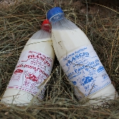Latte Parzialmente Scremato - Az. Agricola Frascio
