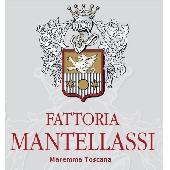 MAESTRALE DOC Maremma Toscana Rosato Ciliegiolo - Fattoria Mantellassi
