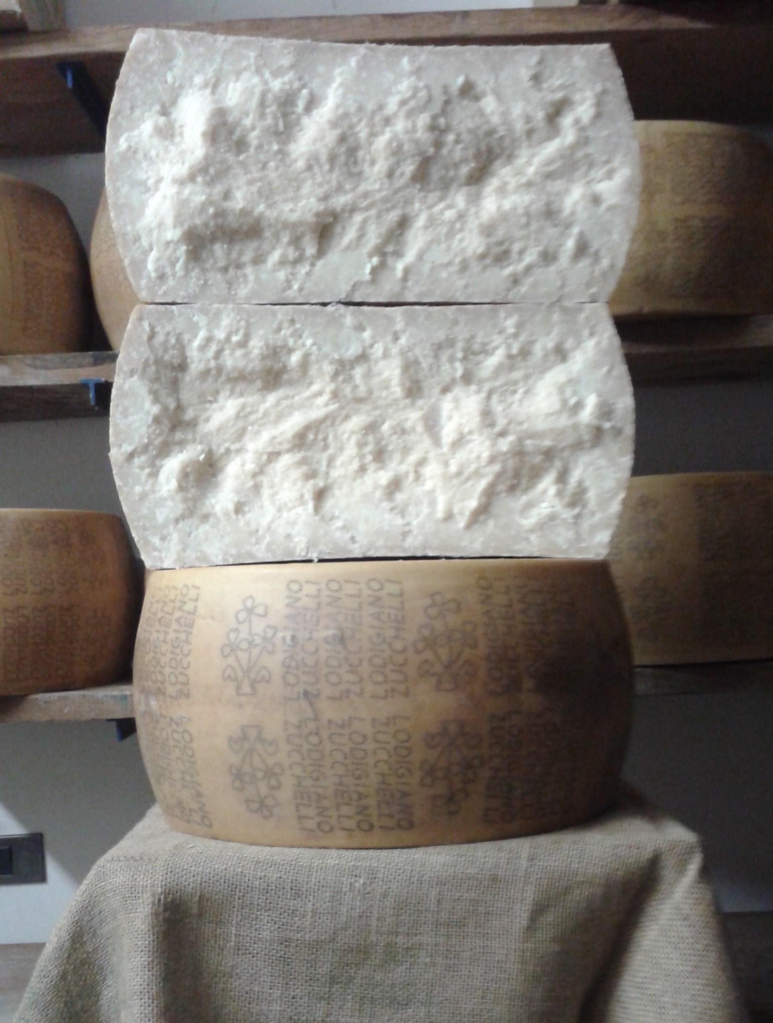 Formaggio Grana Tipico Lodigiano stagionato 47 mesi  - Stagionatore Emilio Brullo
