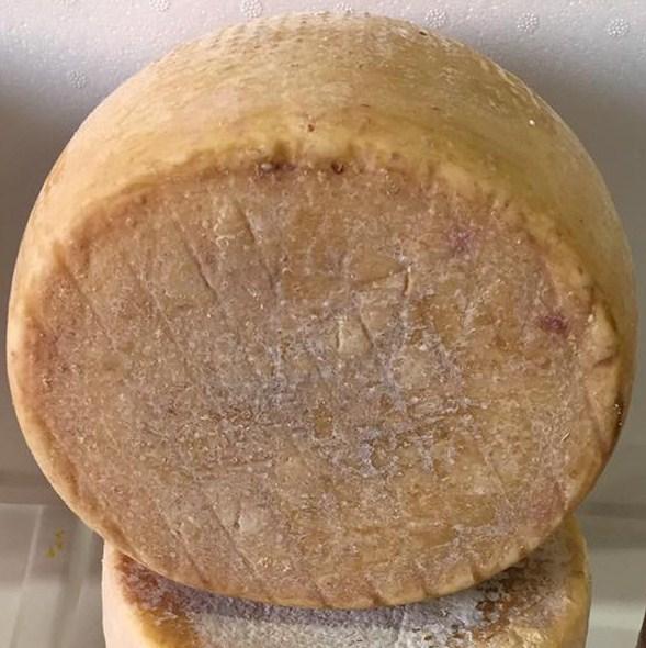 Pecorino Sardo con caglio vegetale - Dolce di cardo - stagionato 12 mesi  - Azienda Agricola Mureddu Aru