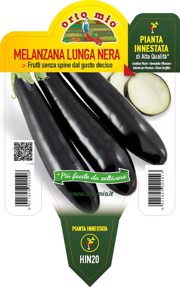 Melanzana lunga nera - Orto Mio