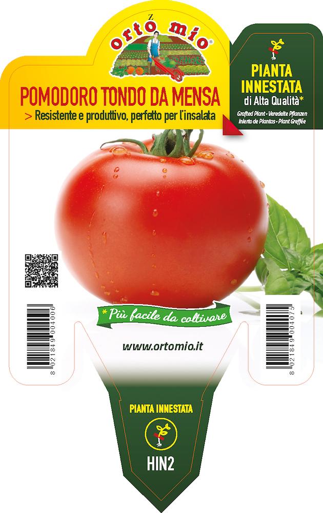 Pomodoro Tondo - Orto mio