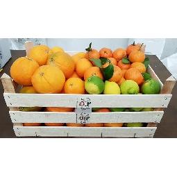 Cassetta degustazione Agrumi di Sicilia  Ribera  - Az. Ag. Guarraggi  6 kg. Arance da Spremuta  6 Kg. Arance  Fioroni Washington  3 kg. Clementine  2 kg. Limoni Naturali